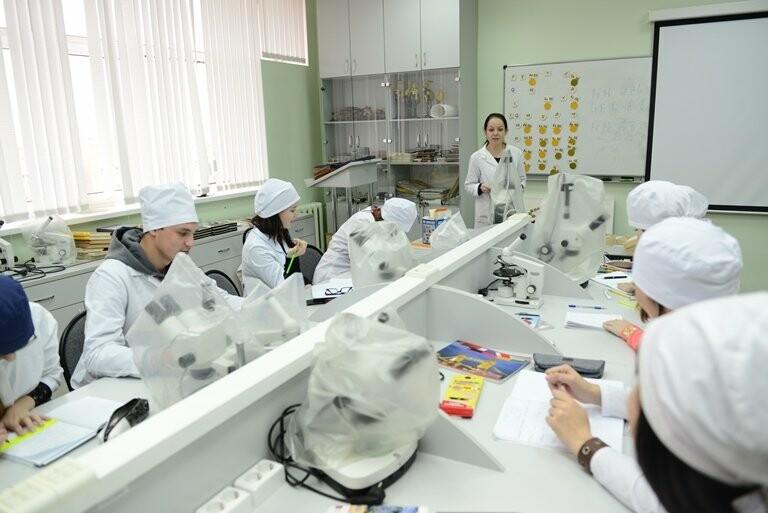 Студенты направления «Педиатрия» будут проходить практику в лечебных учреждениях Коми - Мециацентр Verbum