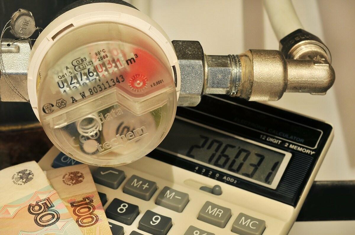 Эксперты рекомендуют жителям установить в своих квартирах индивидуальные приборы учета газа, воды, электроэнергии и тепла, Павел Королев