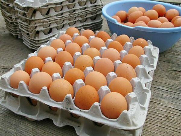 Перед приготовлением яйца необходимо тщательно вымыть с мылом под проточной водой