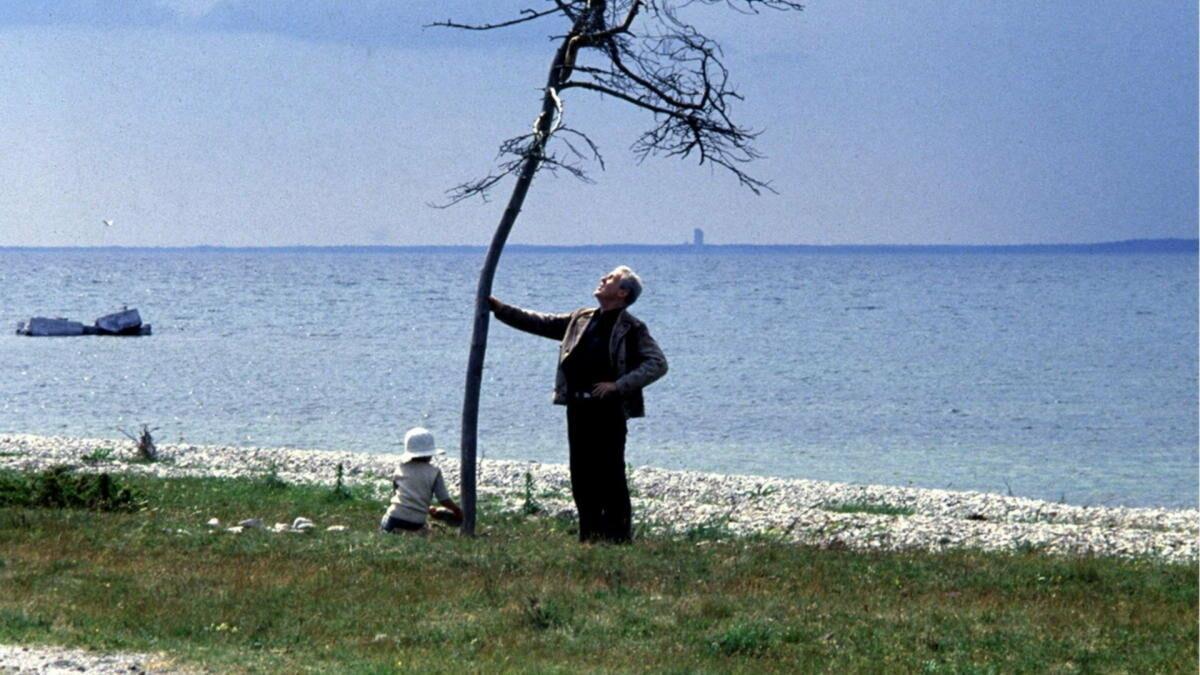 В уединенном доме на живописном острове Готланд живет Александр, журналист, писатель, бывший актер