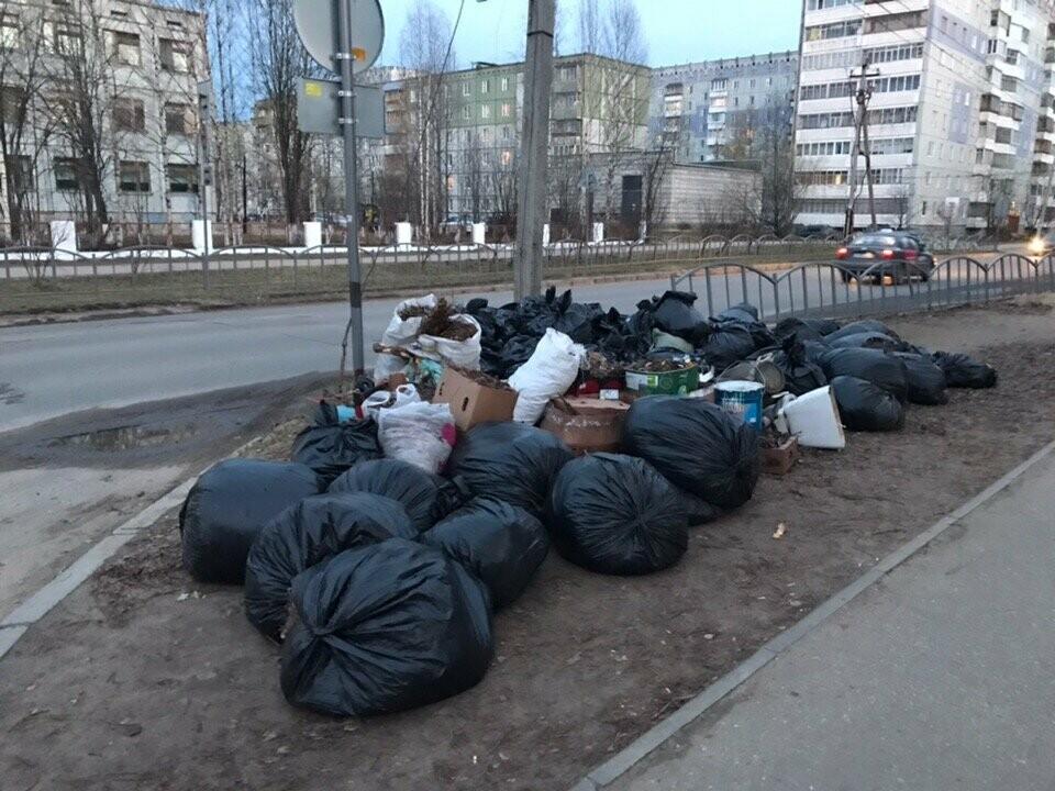 В Сыктывкаре продолжаются субботники, и с улиц уже вывезено 190 тонн мусора